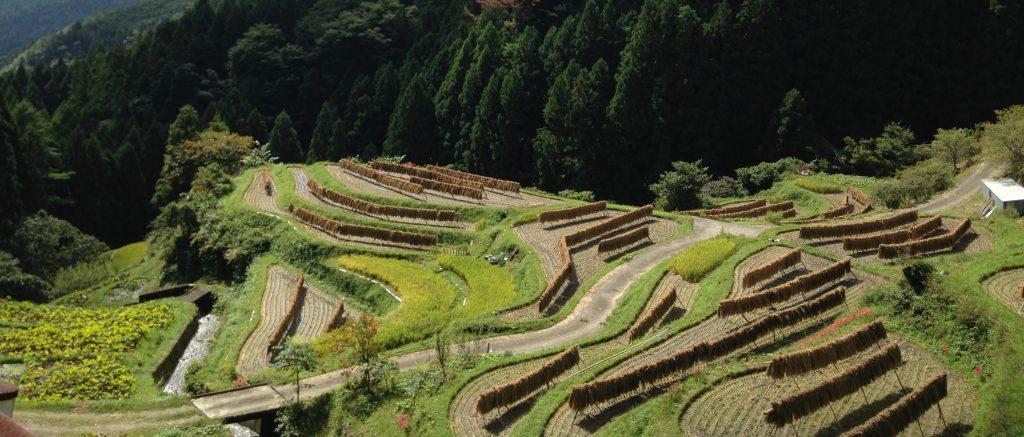 上勝町視察 | 月ヶ谷温泉村キャンプ場パンゲアフィールド